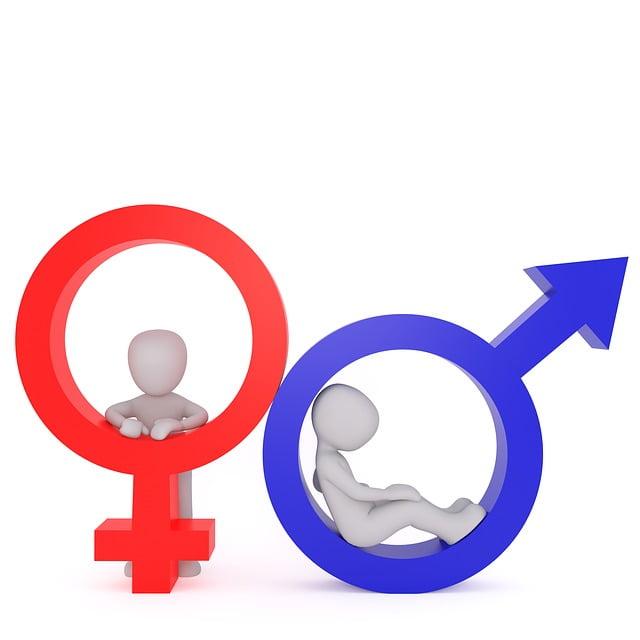 Holandská ministerka plánuje neuvádzať pohlavie na občianskych preukazoch 1