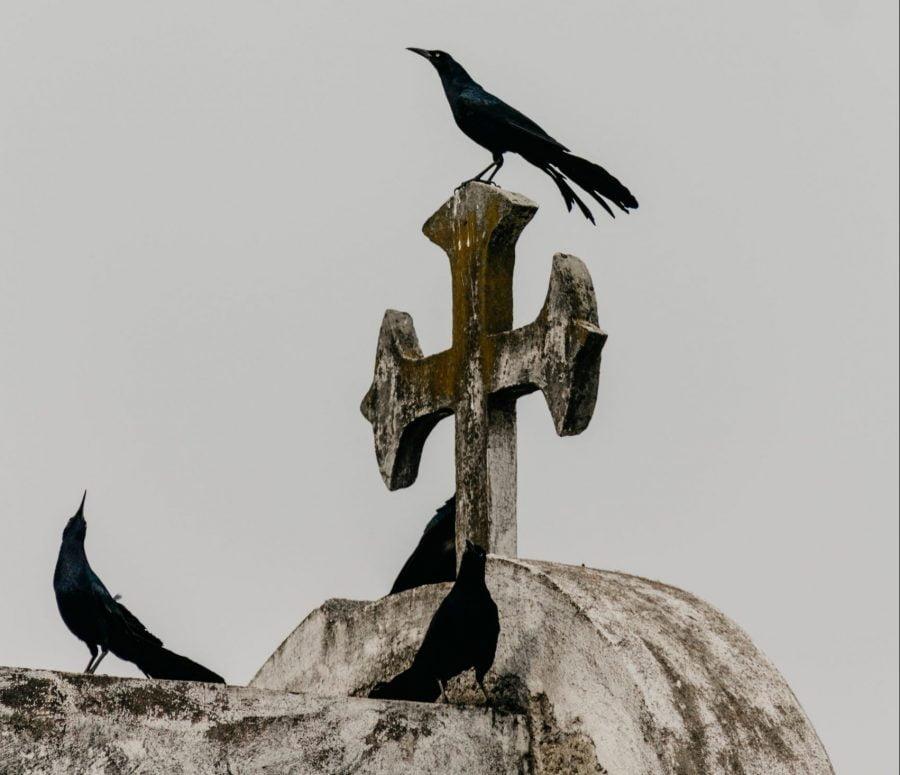 smrť hrob kríž SDZR